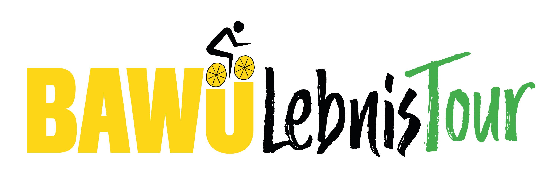 logo_bawülebnis_color.jpg